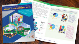 Fairfax County, Health & Human Services 2019 Needs Assessment Report Cover and Two-page spread.