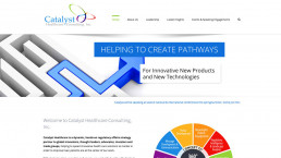 Catalyst Healthcare Consulting Web Site